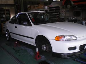 Imgp7453