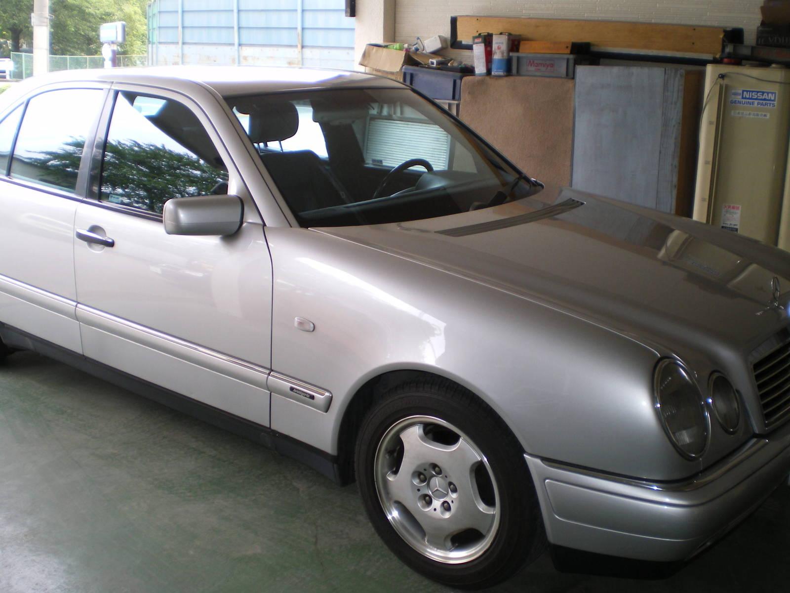 Imgp2600
